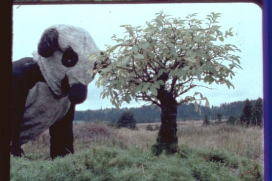 Fischli & Weiss, Flowers and Questions: A Retrospective — The